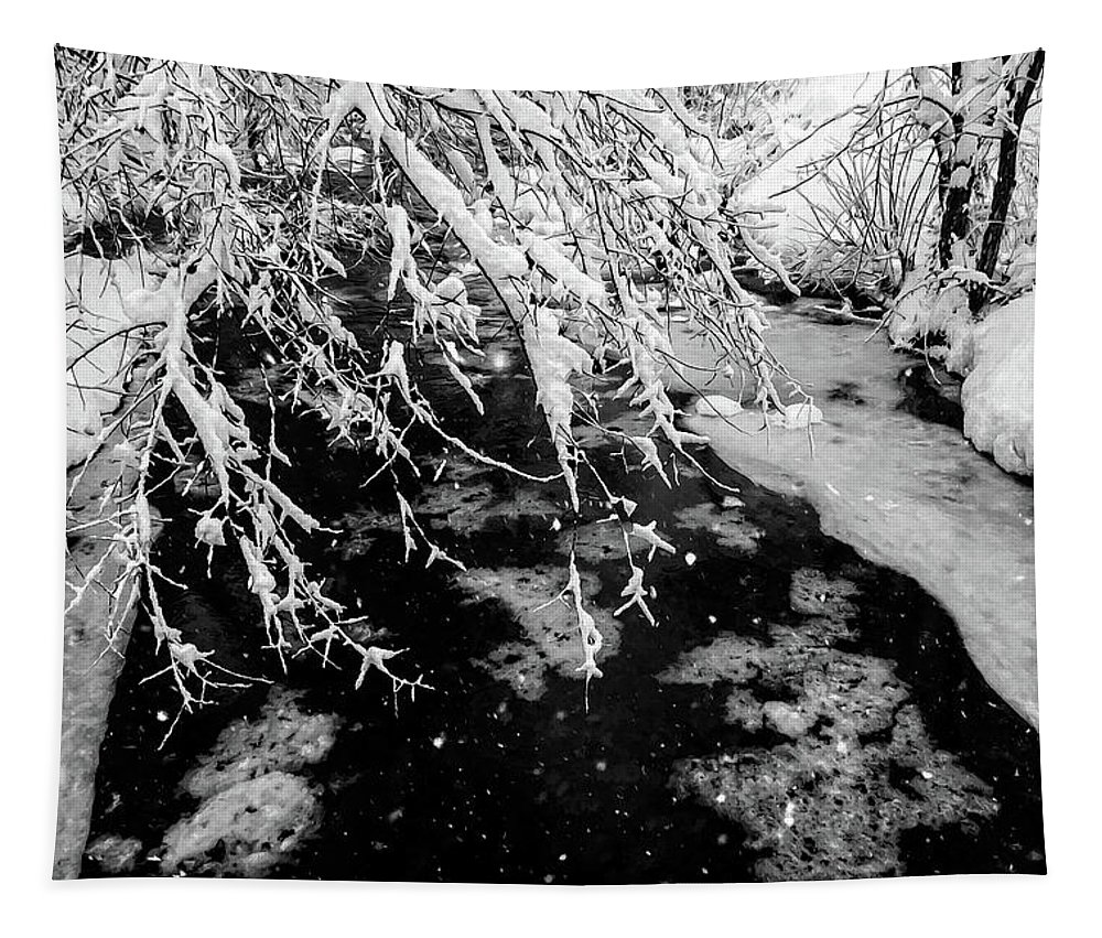 Pennsylvania Tapestry featuring the photograph Snow Pa 10-013 by Scott McAllister
