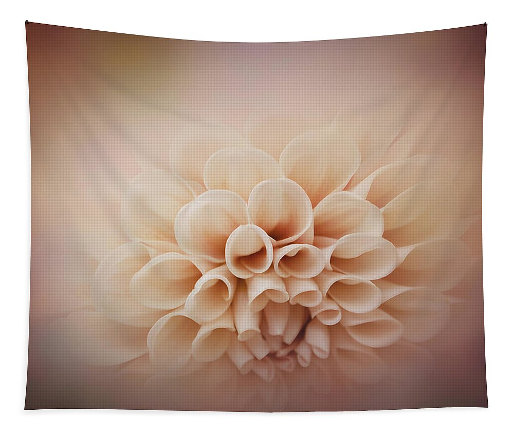 Photography Tapestry featuring the digital art Soft, Subtle Dahlia by Terry Davis