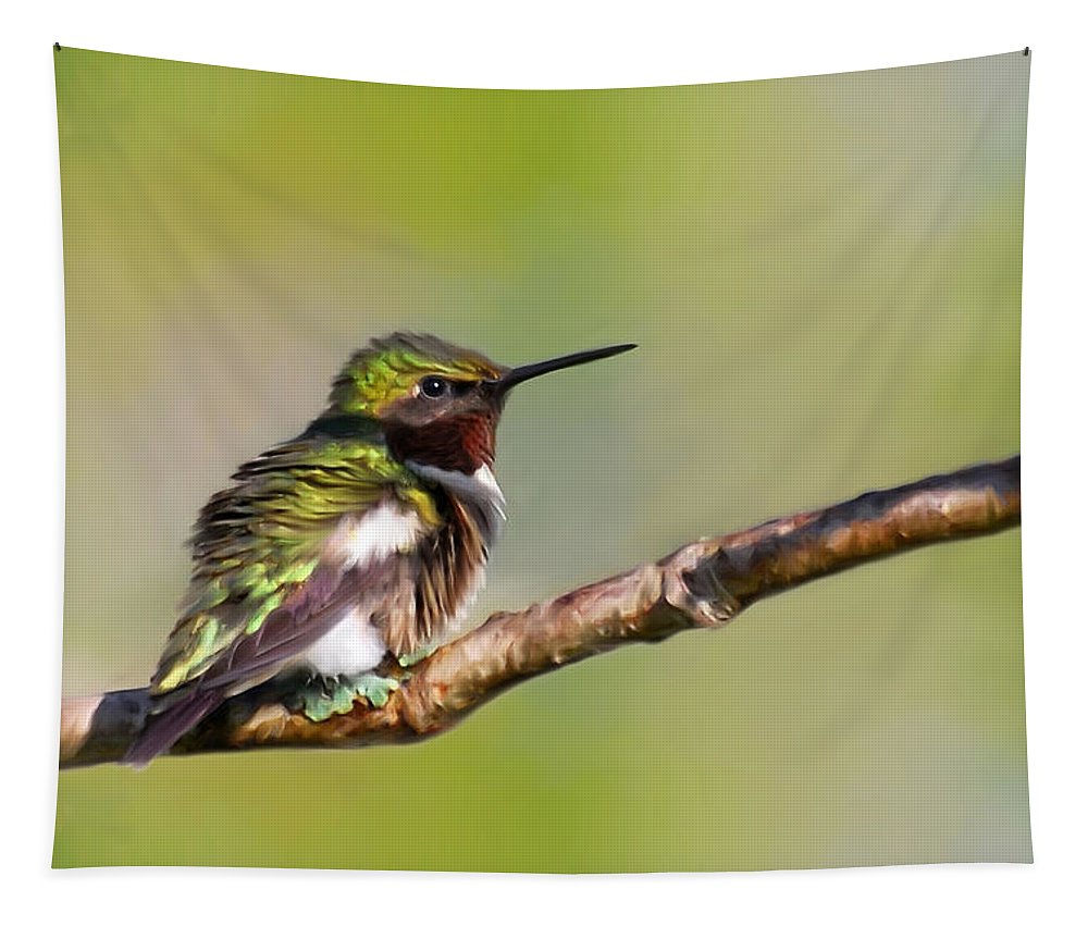 Spring Green Tapestry featuring the mixed media Spring Green Hummingbird by Christina Rollo
