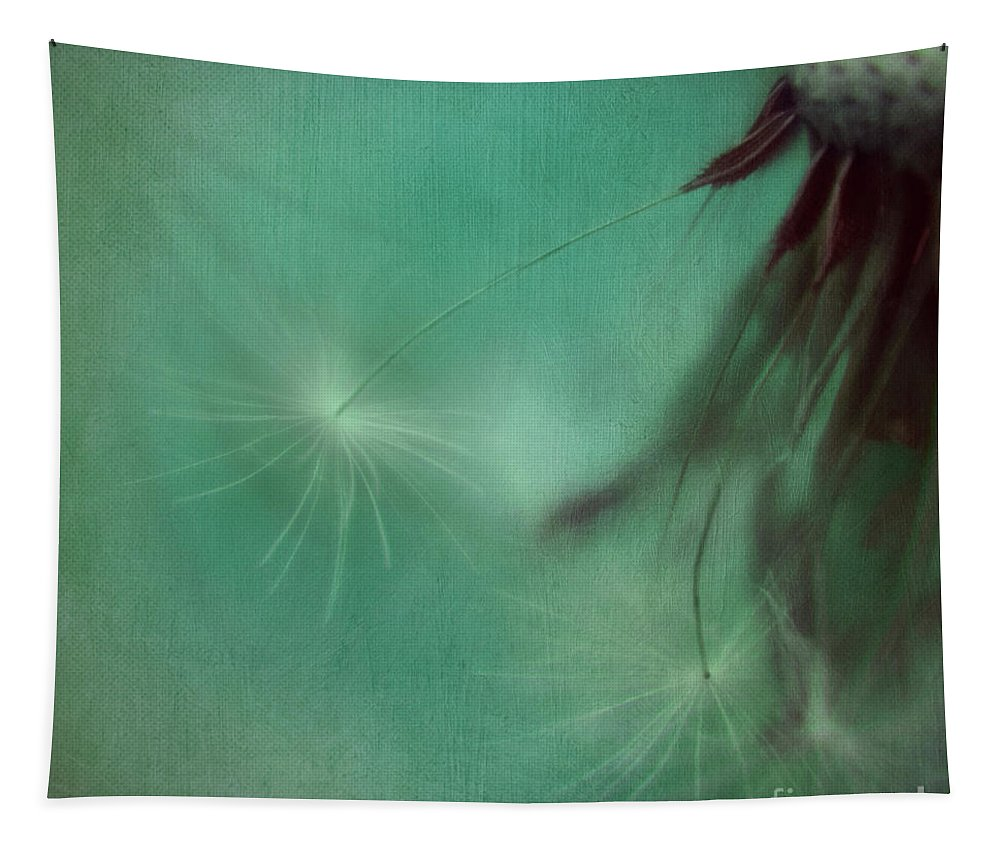 Dandelions Tapestry featuring the photograph Stay Close by Priska Wettstein