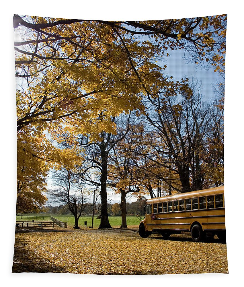 Landscape Tapestry featuring the photograph Study In Yellow by Kirsten O'Leary