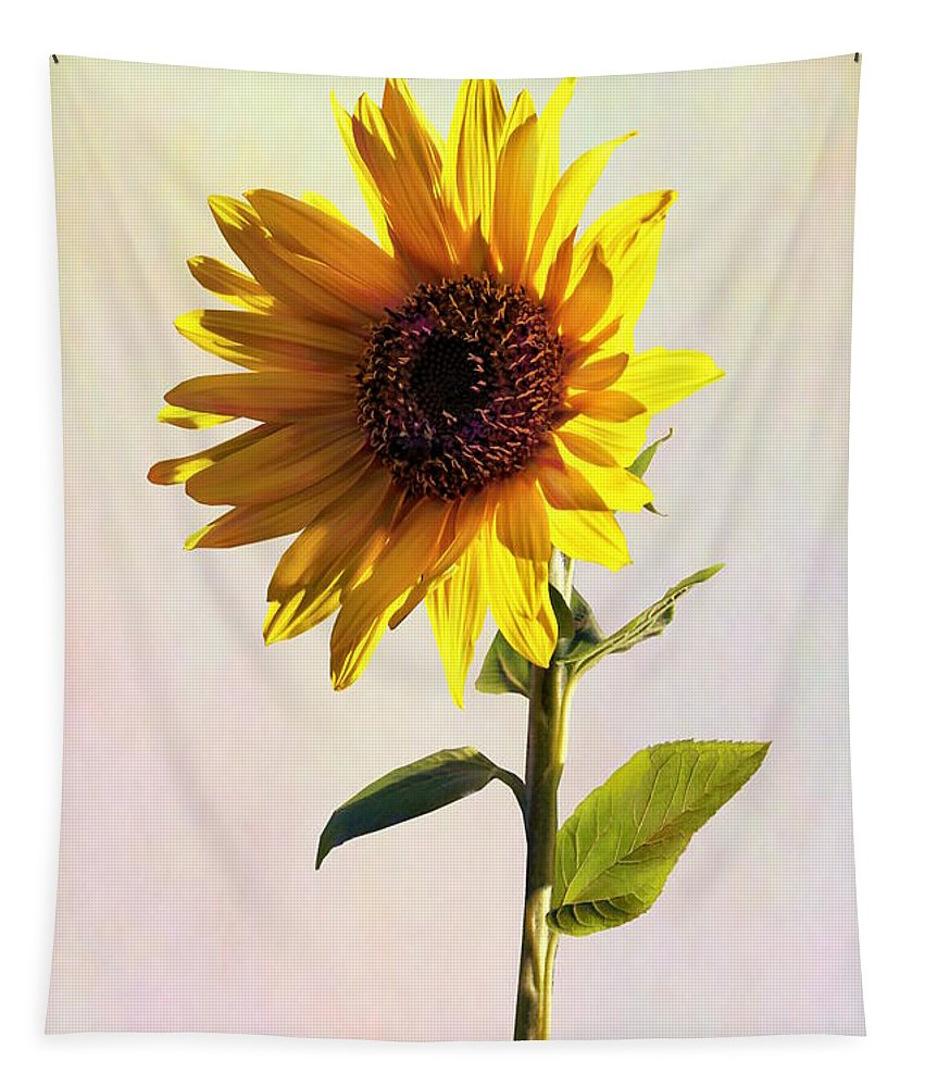 Sunflower Tapestry featuring the photograph Sunflower Enjoying The Sun by Susan Savad