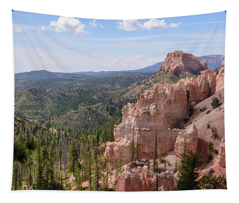 Swamp Canyon Tapestry featuring the photograph Swamp Canyon - Bryce Canyon - Utah by Debra Martz