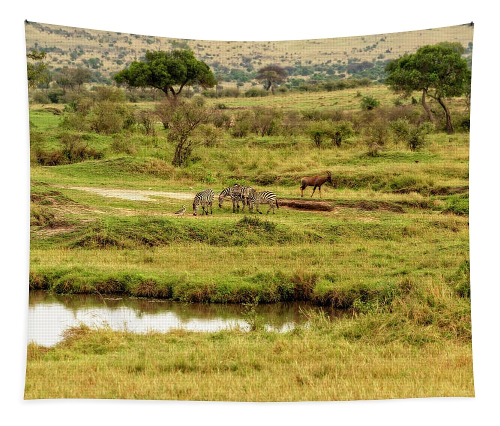 Zebra Tapestry featuring the photograph Tanzania Animal Landscape by Kay Brewer