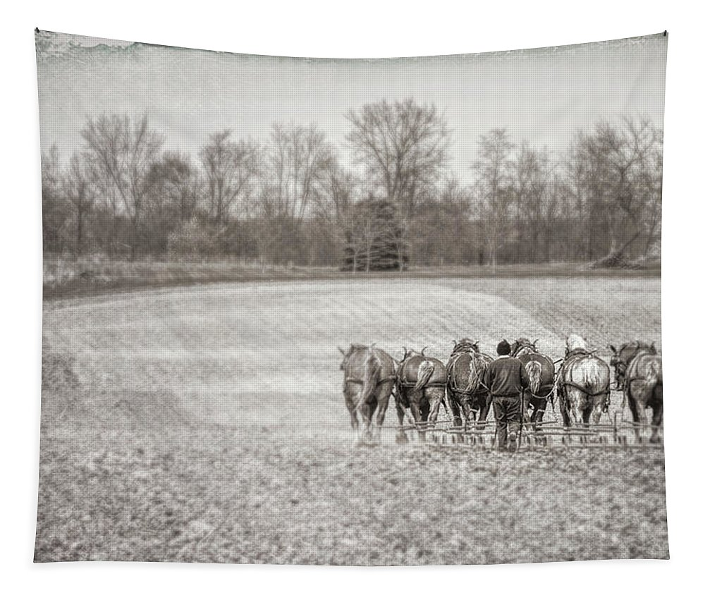 Amish Tapestry featuring the photograph Team Of Six Horses Tilling The Fields by Tom Mc Nemar