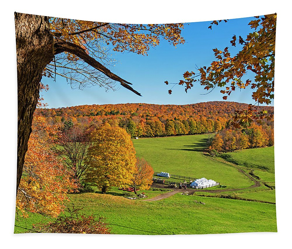 Woodstock Tapestry featuring the photograph Tending To The Farm Woodstock Vermont Vt Vibrant Autumn Foliage Yellow And Orange by Toby McGuire