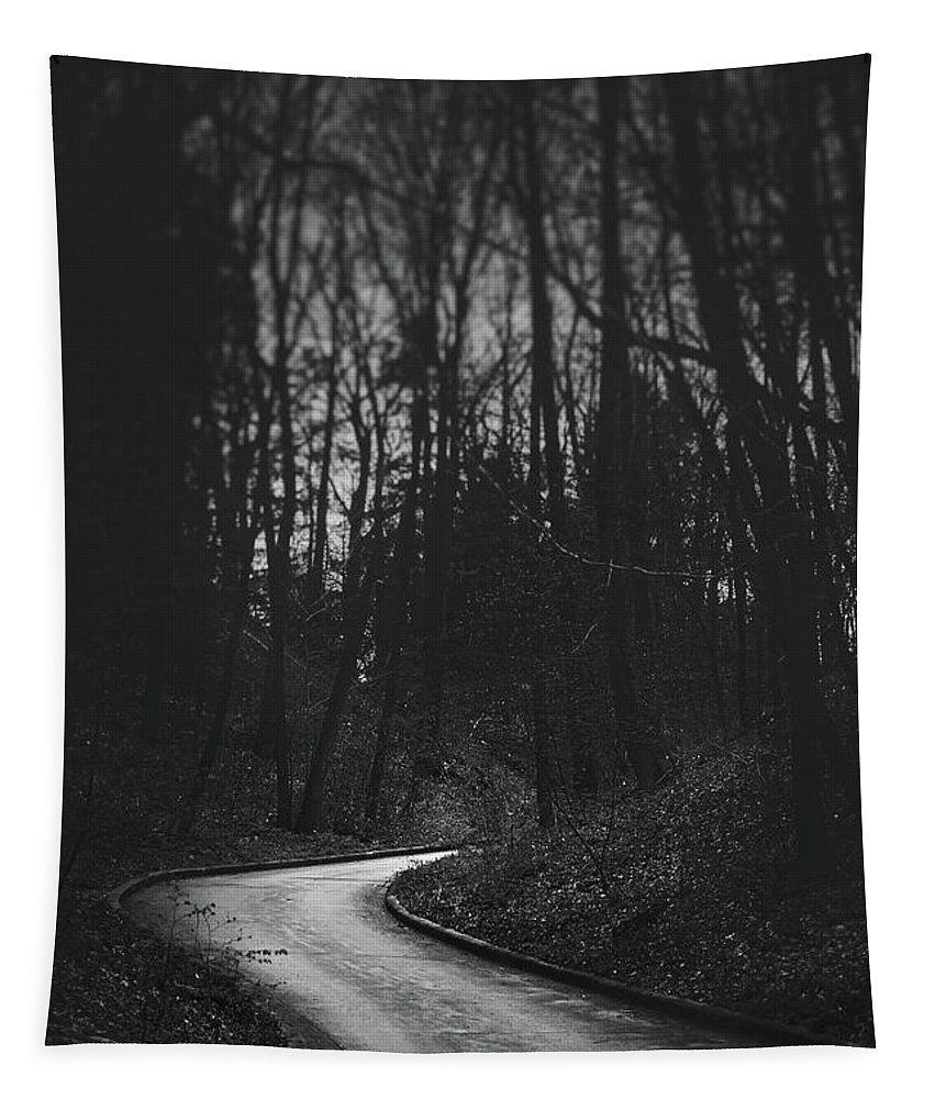 Black And White Tapestry featuring the photograph That Lonesome Road by Scott Norris