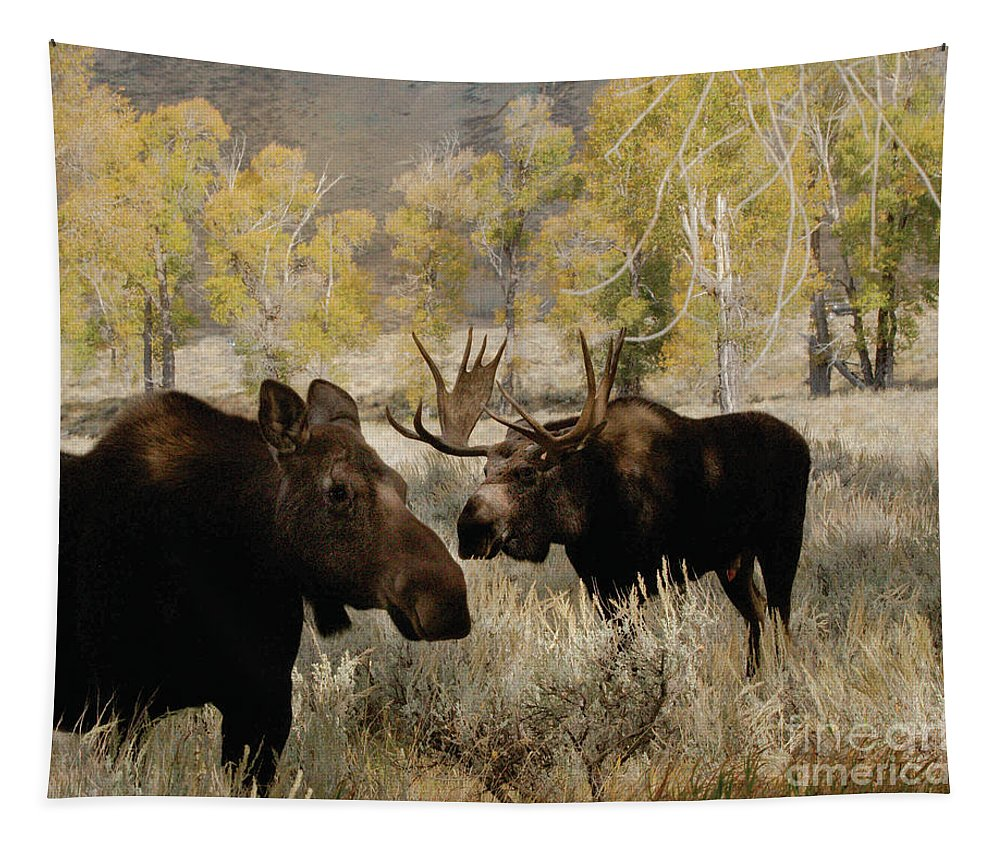 Moose Tapestry featuring the photograph The Moose Rut by Dennis Blum