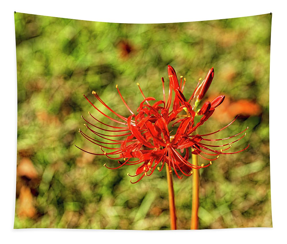 Spider Lily Tapestry featuring the photograph The Spider Lily by Kay Brewer