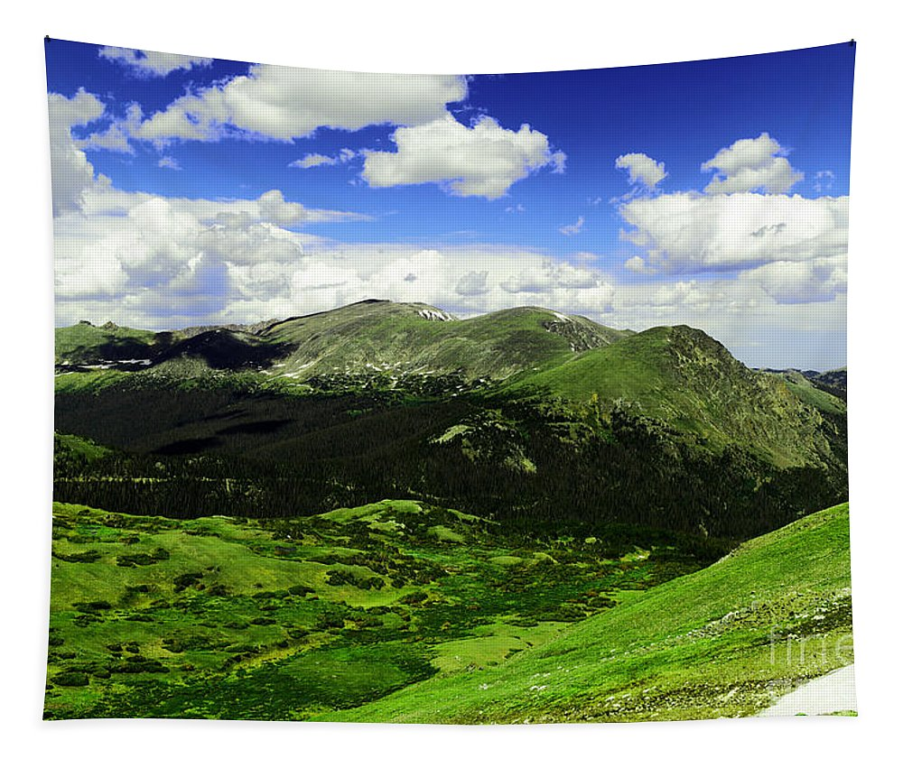 Mountain Tapestry featuring the photograph The Top Of Independence Pass by Jeff Swan