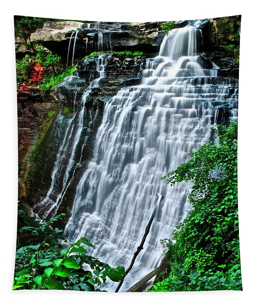 Brandywine Tapestry featuring the photograph This Is Brandywine Falls by Frozen in Time Fine Art Photography