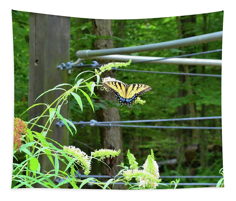 Tiger Swallowtail Butterfly Tapestry featuring the photograph Tiger Swallowtail Butterfly by Lisa Wooten