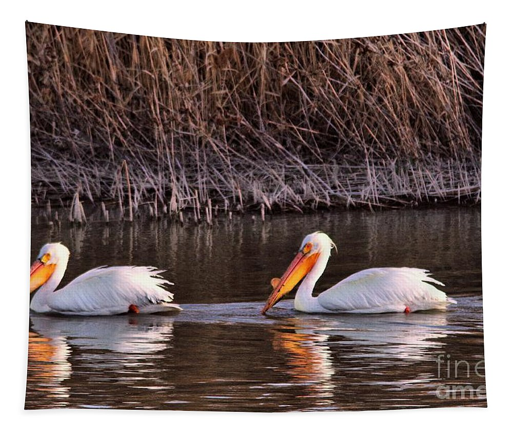 Pelicans Tapestry featuring the photograph To Pelicans Trolling For Fish by Jeff Swan