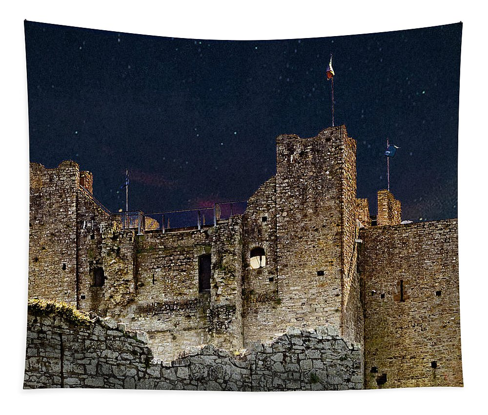 Photography Tapestry featuring the photograph Trim Castle by Paul Wear