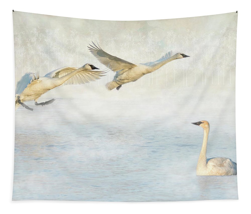 Swans Tapestry featuring the photograph Trumpeter Swans - Don't Land On Me by Patti Deters