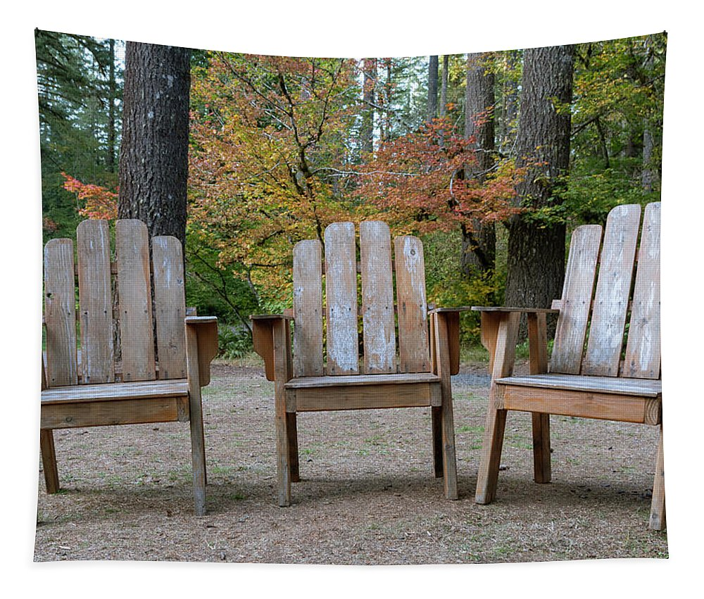 Chairs Tapestry featuring the photograph Waiting by Catherine Avilez