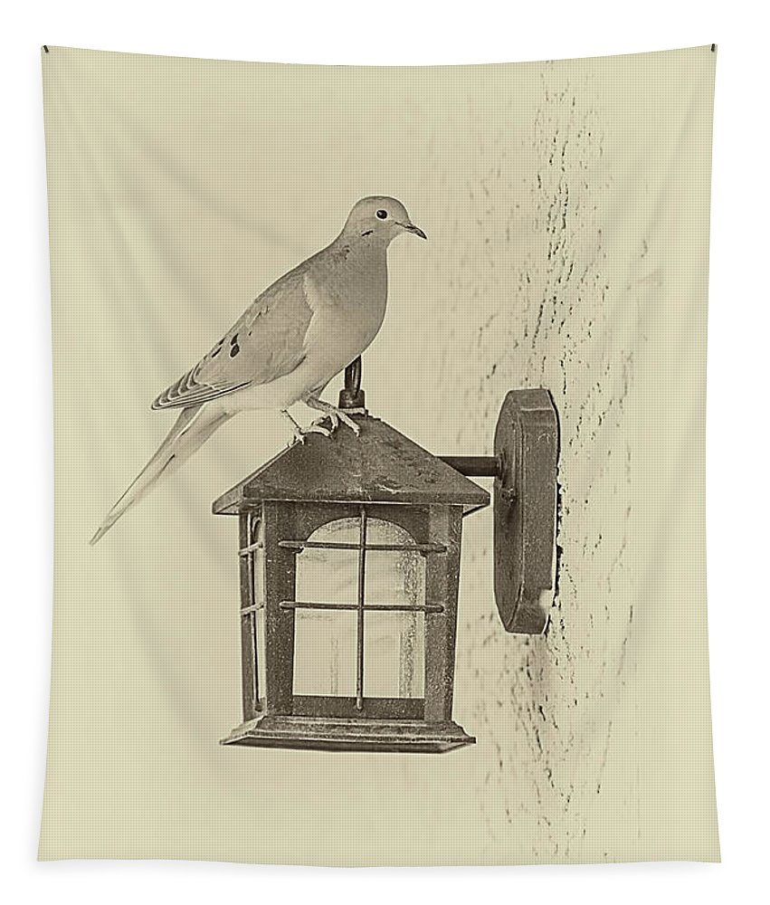 Mourning Pigeon Tapestry featuring the photograph Waiting by Elisabeth Lucas