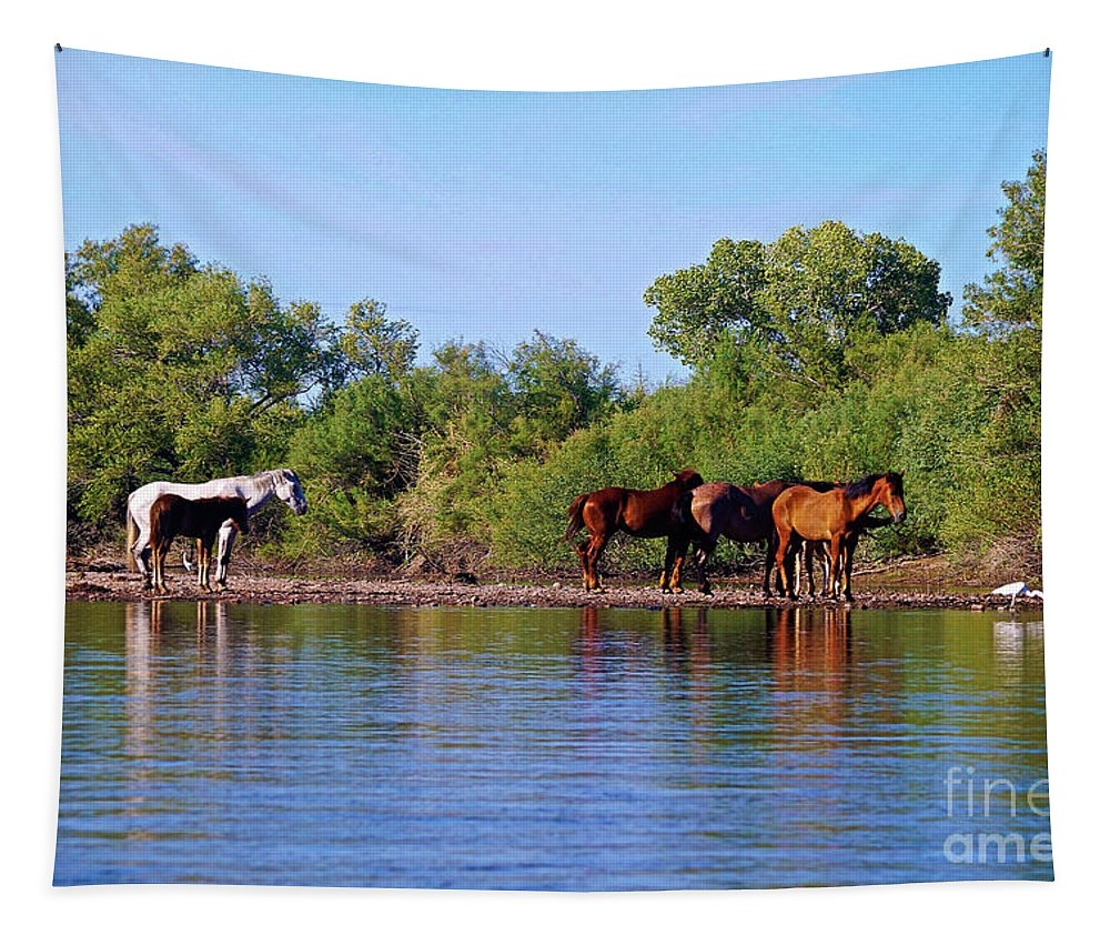 Wildlife Tapestry featuring the photograph What's Egret Hunting by Darryl Treon