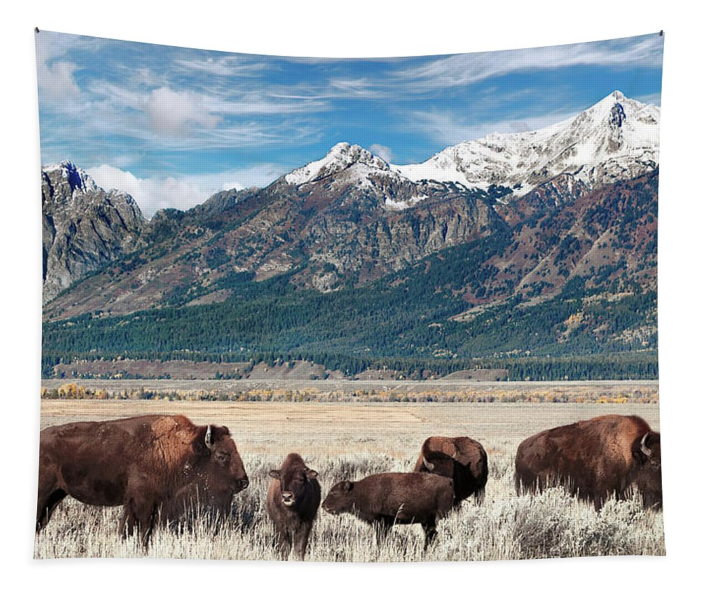 Bison Tapestry featuring the photograph Wild Bison On The Open Range by Kathleen Bishop
