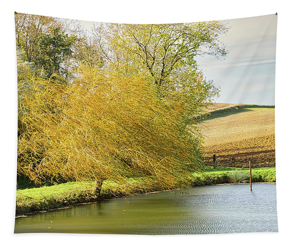 Wind Tapestry featuring the photograph Wind In The Willow by Michael Briley