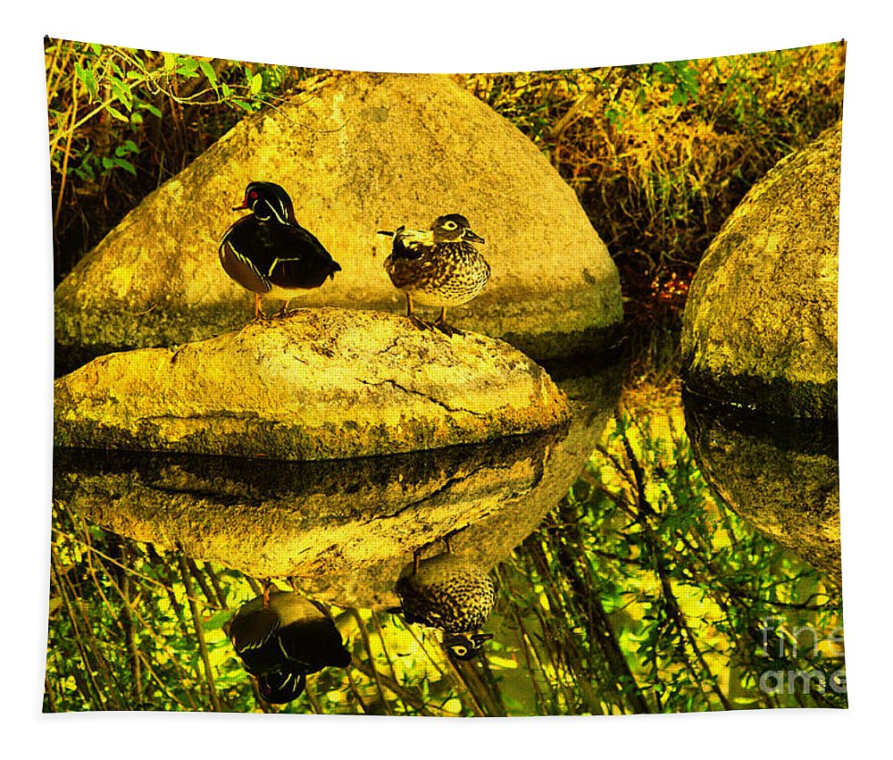Ducks Tapestry featuring the photograph Wood Duck Pair And Their Reflection by Jeff Swan
