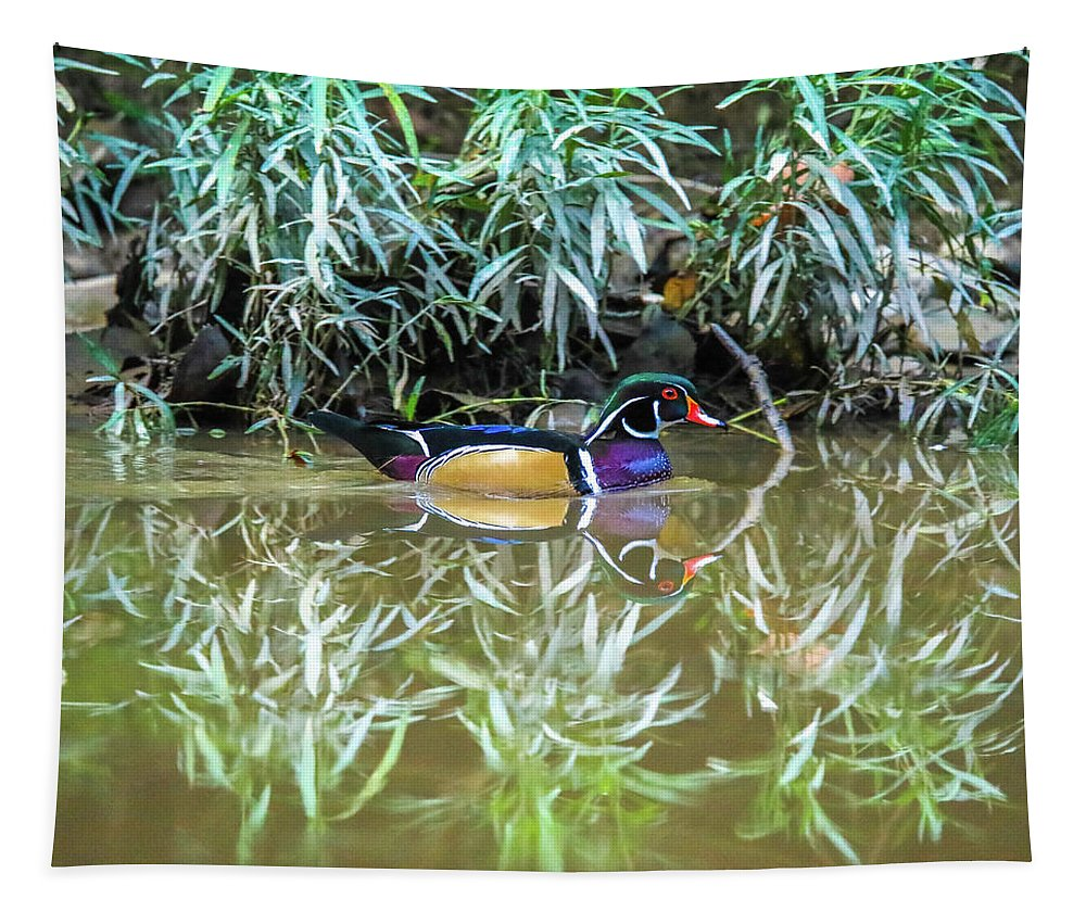 Wood Duck Reflection Tapestry featuring the photograph Wood Duck Reflection by Dan Sproul
