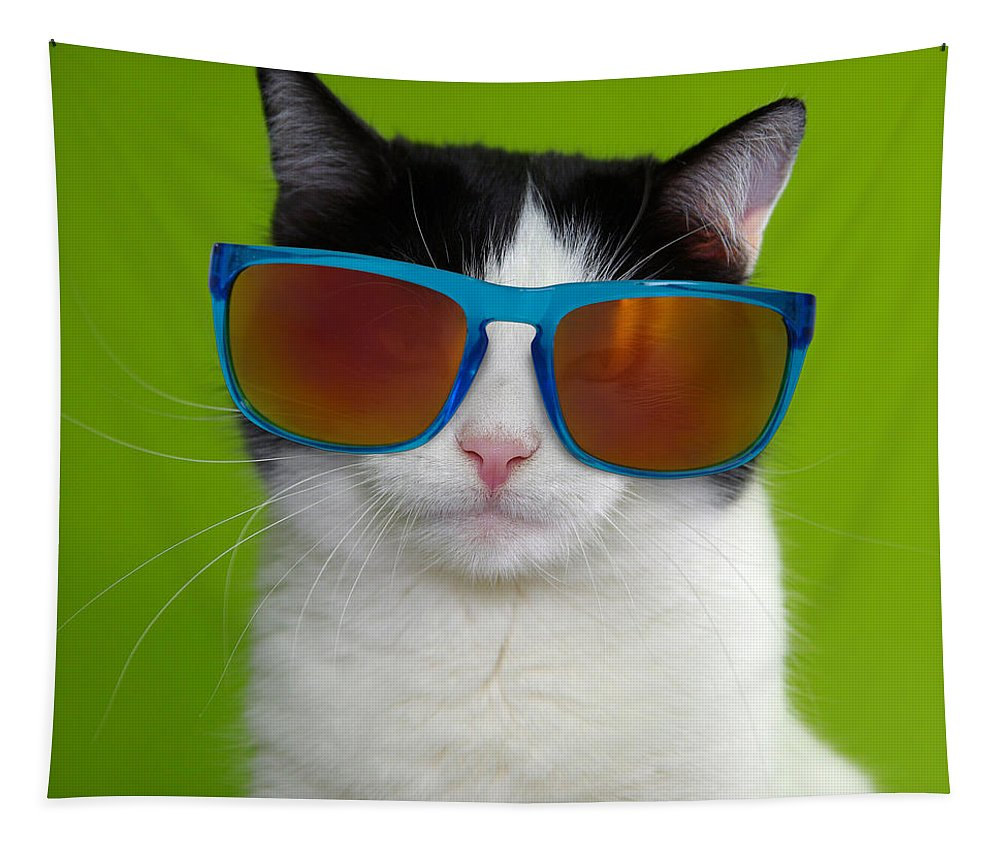 Cat Tapestry featuring the photograph Cat wearing sunglasses by Courtney Hall
