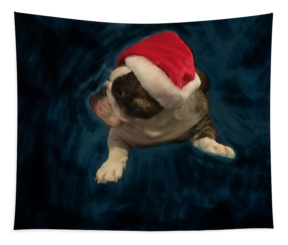 Christmas Tapestry featuring the photograph Christmas With Gus by Adrienne Hantz Kelley