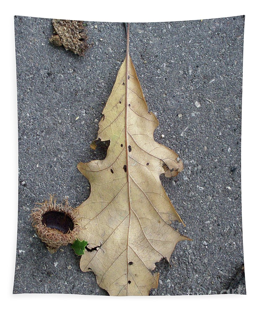 Nature Tapestry featuring the photograph Happenstance by Mary Mikawoz