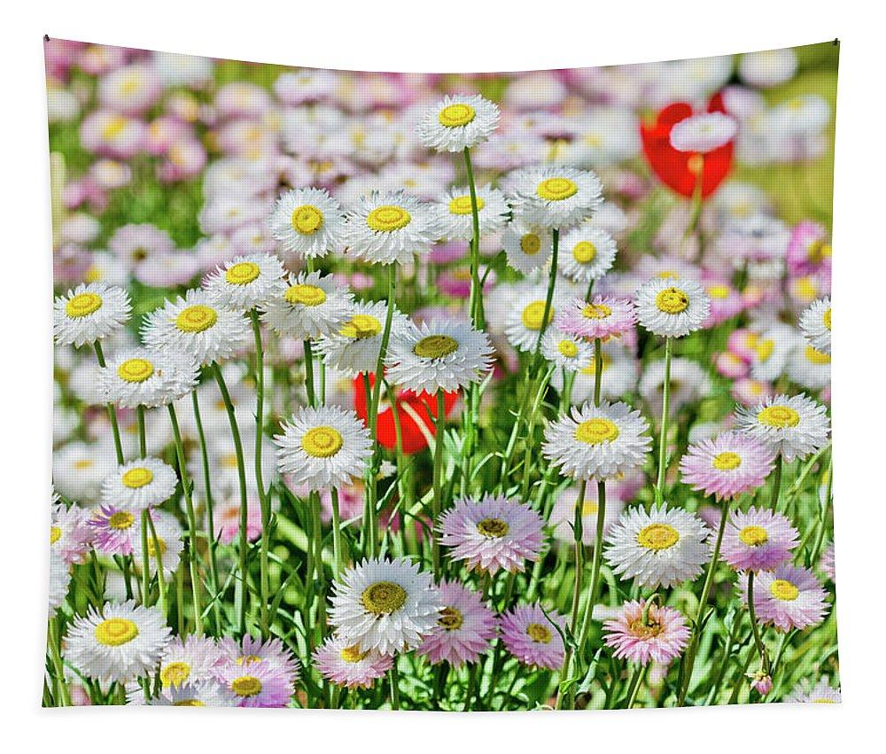 Happy Family Tapestry featuring the photograph Happy Family by Az Jackson