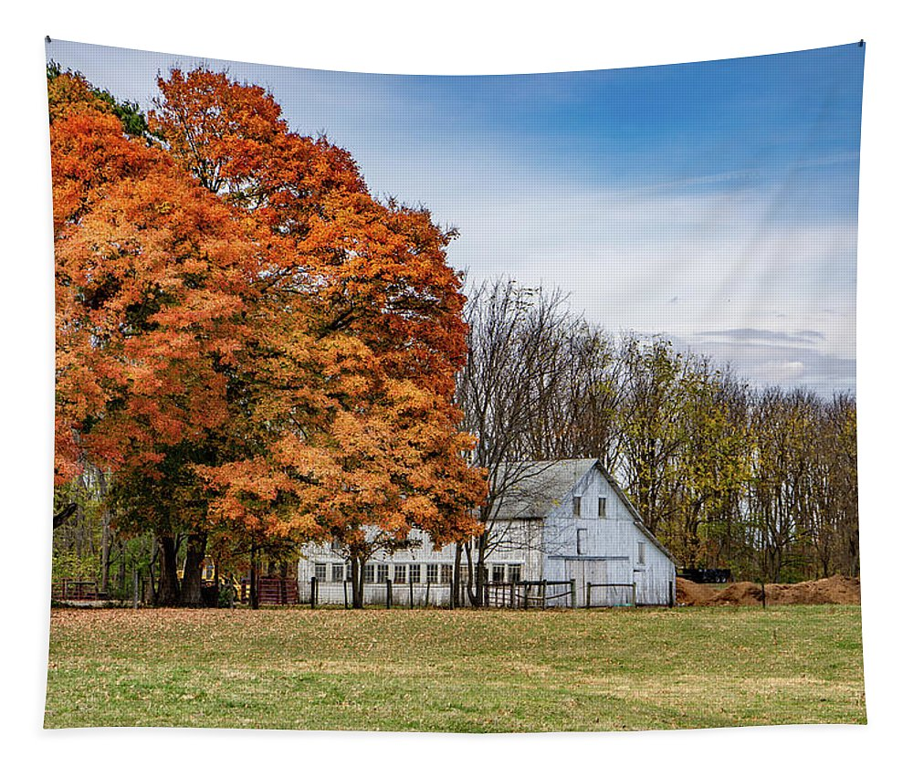 Landscape Tapestry featuring the photograph Indiana Barn #122 by Scott Smith