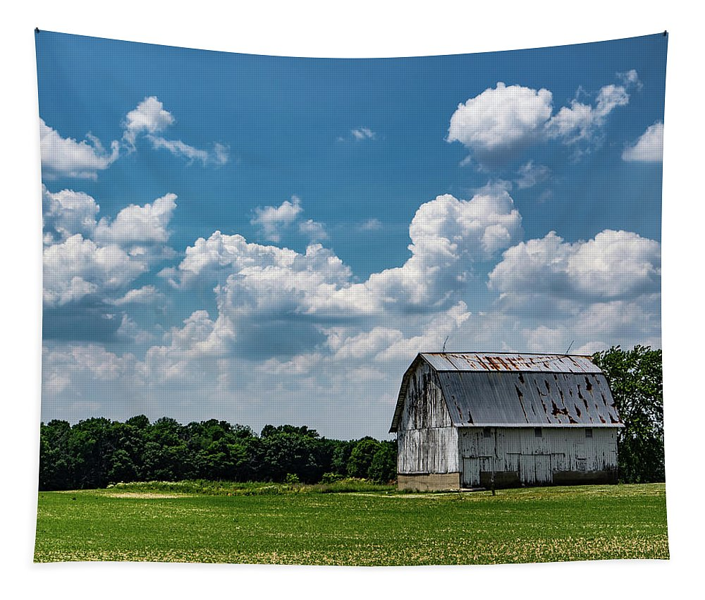 Barn Tapestry featuring the photograph Indiana Barn, #5 by Scott Smith