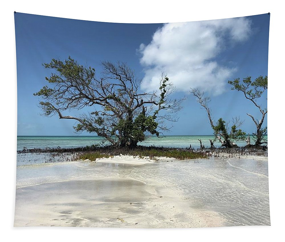 Key West Florida Waters Tapestry featuring the photograph Key West Waters by Ashley Turner