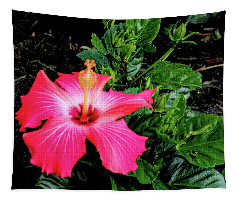 Flower Tapestry featuring the digital art La cayena by Daniel Cornell