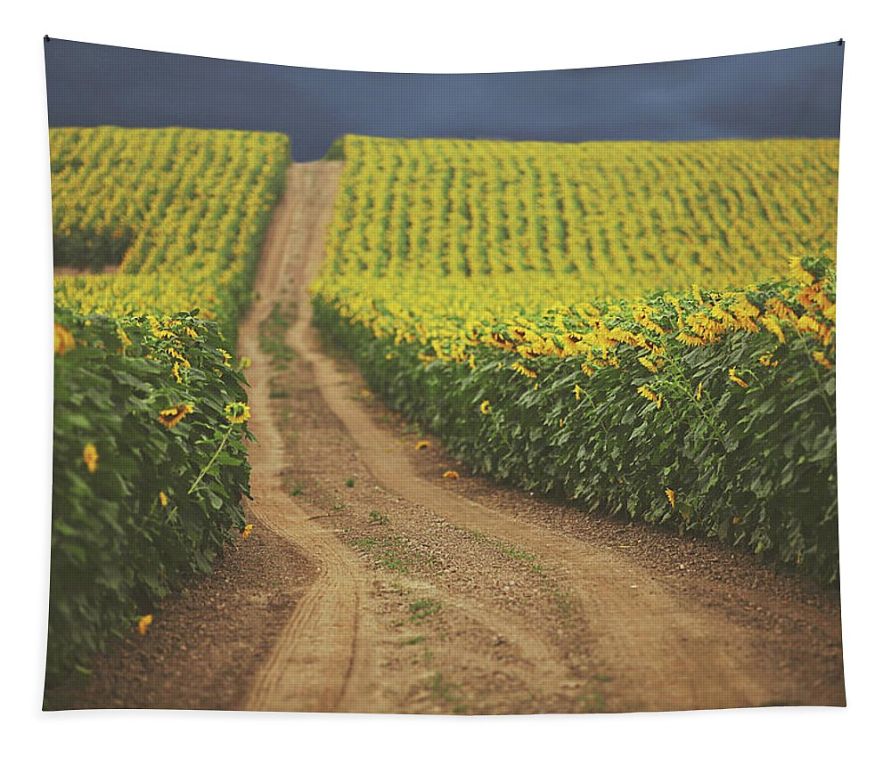 Summer Tapestry featuring the photograph Oz by Carrie Ann Grippo-Pike