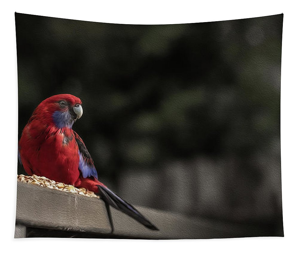 Rosella Tapestry featuring the photograph Rosella 1 by Leigh Henningham
