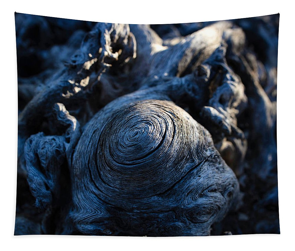 Saguaro Tapestry featuring the photograph Saguaro Vortex by Kati Astraeir