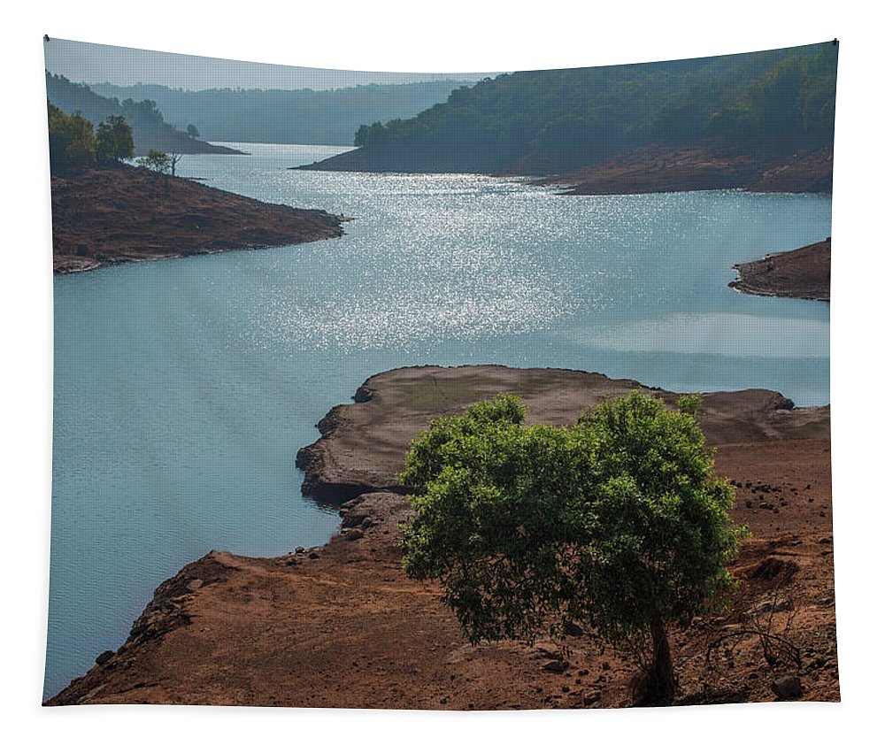 Prime Tapestry featuring the photograph Ssk 7297 Prime Location. Color by Sunil Kapadia