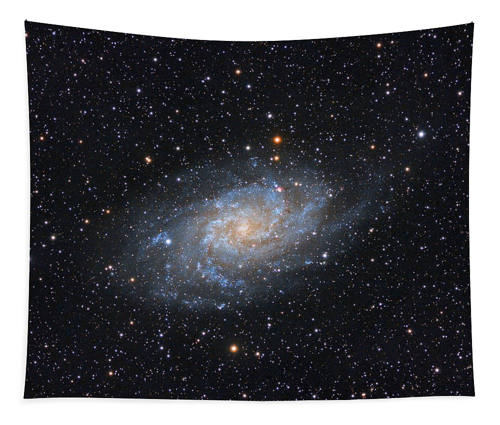 Galaxy Tapestry featuring the photograph Triangulum Galaxy by Prabhu Astrophotography