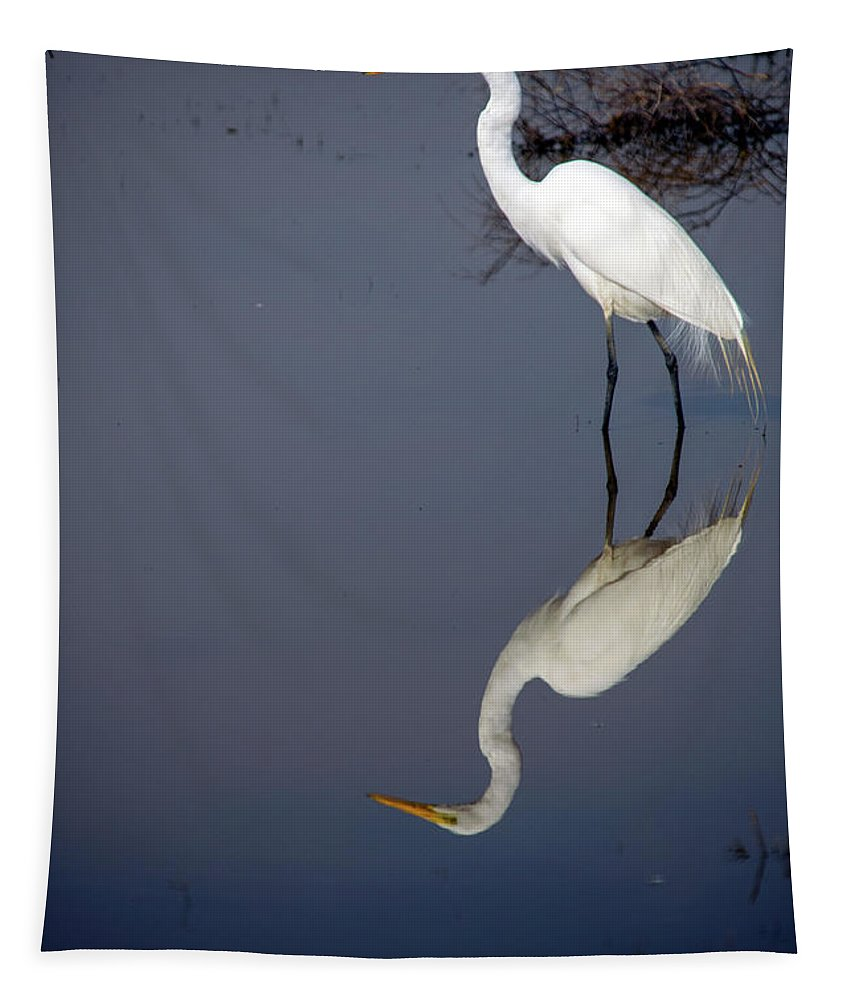 Bird Tapestry featuring the photograph White Egret Reflection by Frank Wilson