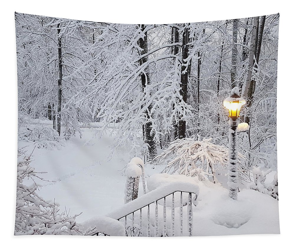 Winter Tapestry featuring the photograph Winter by Trevor Slauenwhite