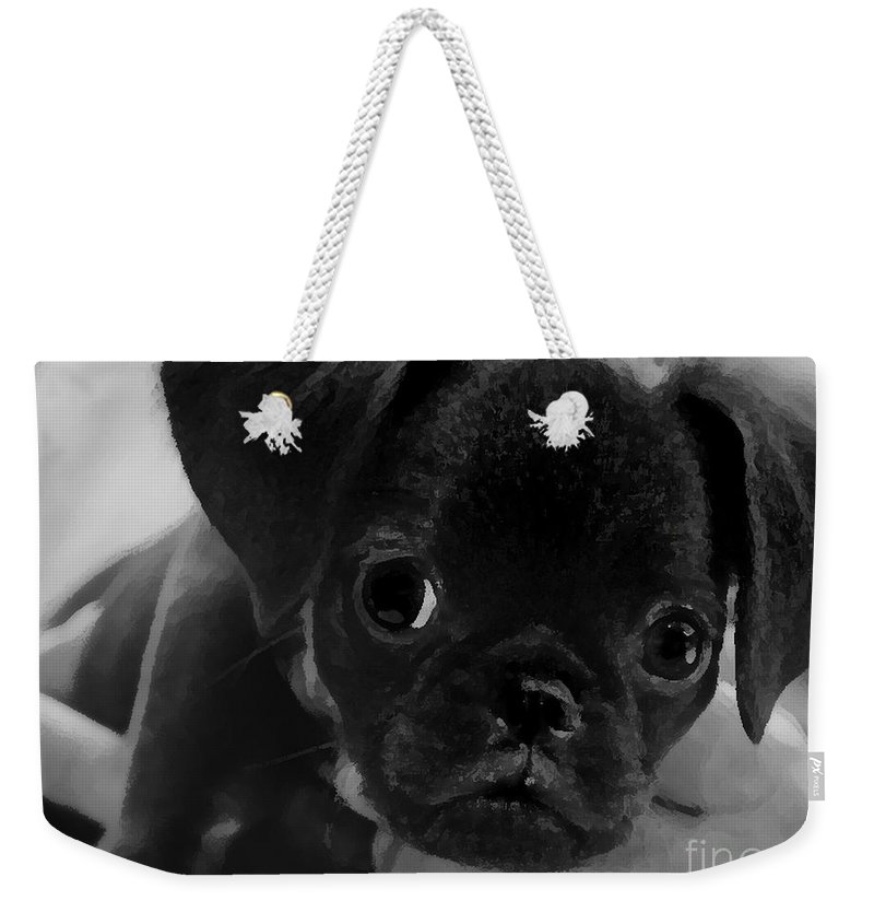 Brussel Griffon Paintings Weekender Tote Bag featuring the mixed media Brussel Griffon Puppy Painting by Marvin Blaine