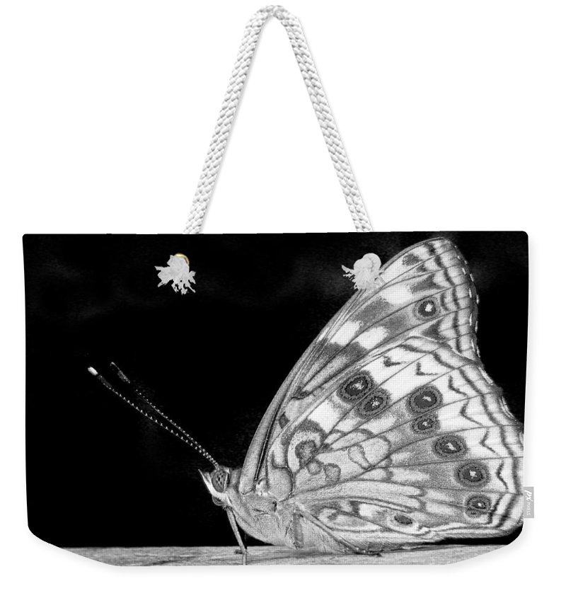 Black And White Weekender Tote Bag featuring the photograph Butterfly In Black And White by David and Carol Kelly