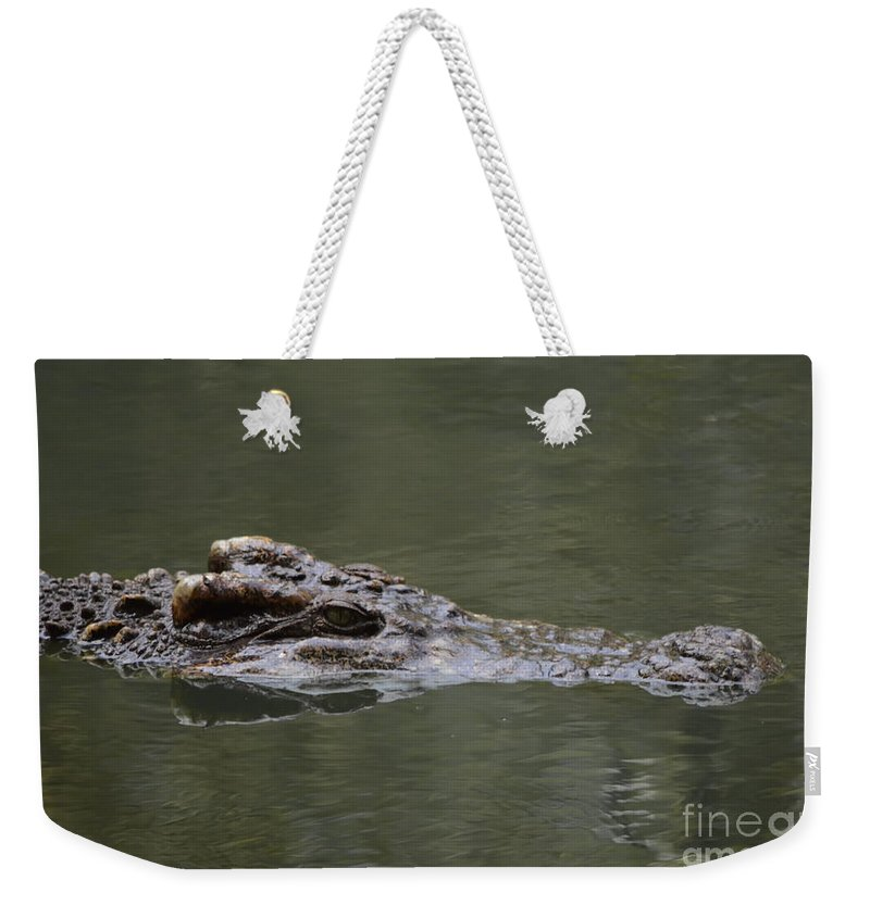 Michelle Meenawong Weekender Tote Bag featuring the photograph Crocodile by Michelle Meenawong