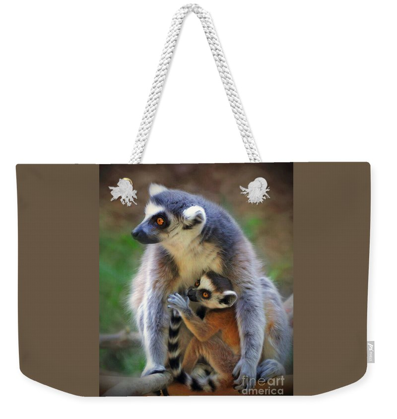 Wildlife Weekender Tote Bag featuring the photograph  Mother And Baby Monkey by Savannah Gibbs