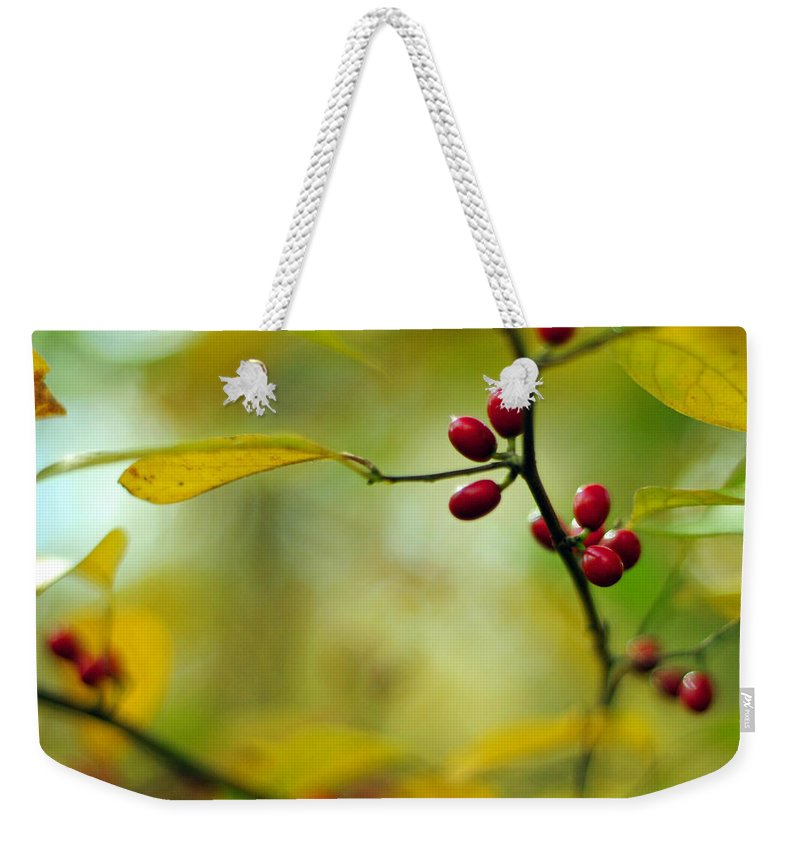 Lindera Benzoin Weekender Tote Bag featuring the photograph Spicebush With Red Berries by Rebecca Sherman