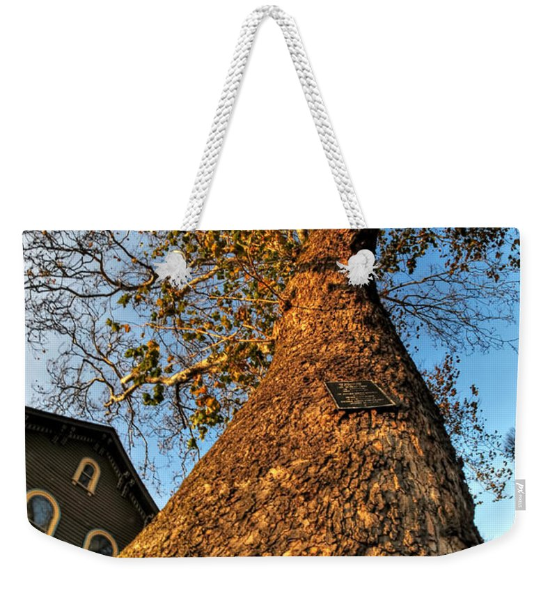 Weekender Tote Bag featuring the photograph 001 Oldest Tree Believed To Be Here In The Q.c. Series by Michael Frank Jr