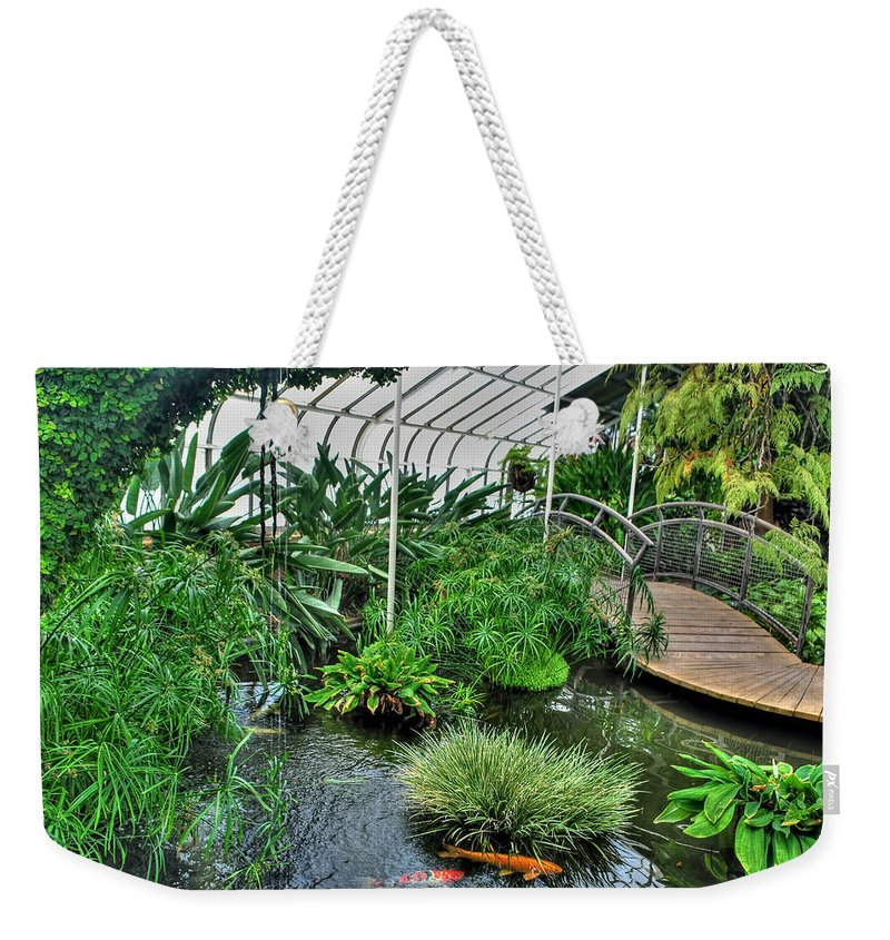 Buffalo Botanical Gardens Weekender Tote Bag featuring the photograph 001 Within The Rain Forest Buffalo Botanical Gardens Series by Michael Frank Jr