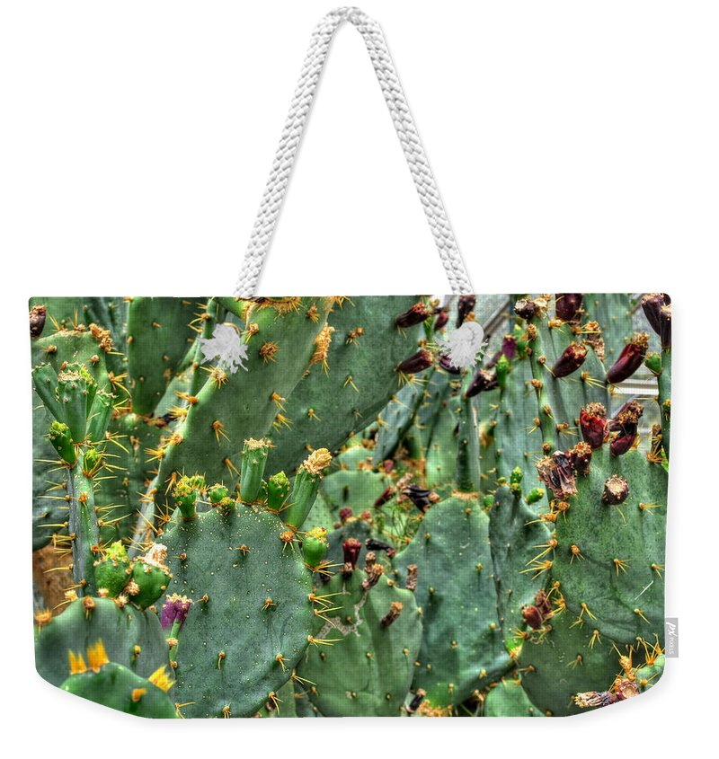 Buffalo Botanical Gardens Weekender Tote Bag featuring the photograph 002 For The Cactus Lover In You Buffalo Botanical Gardens Series by Michael Frank Jr
