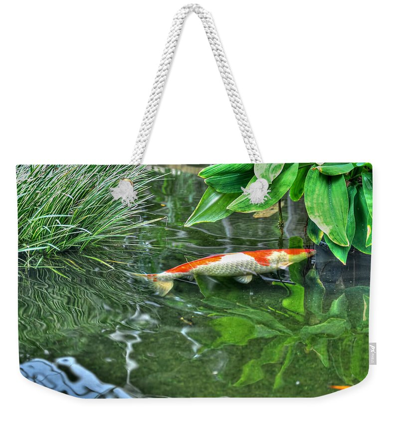 Buffalo Botanical Gardens Weekender Tote Bag featuring the photograph 002 Within The Rain Forest Buffalo Botanical Gardens Series by Michael Frank Jr